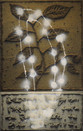 Botanique I (30 x 47 cm )