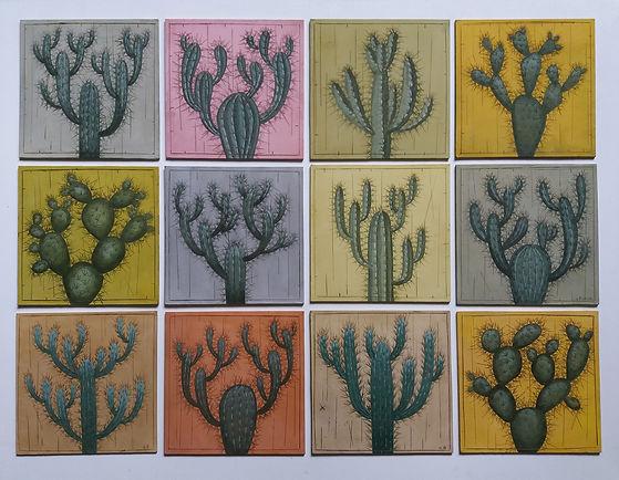 Cactus tous.jpg