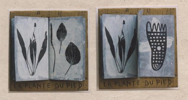 La plante du pied ( 22 x22 cm)