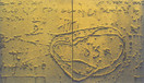 Trace ( 60 x 35 cm )