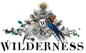Wilderness-Logo_plainuse.jpg