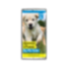 Guide_Dogs_Wrapper_v3.png