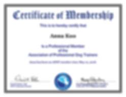 APDT Professional Member Certificate.jpg