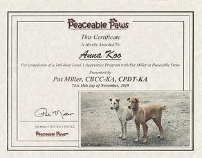 Pat Miller Apprenticeship Certificate.jp