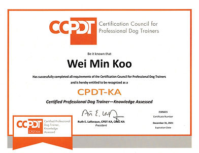 CCPDT-KA Certificate.jpg