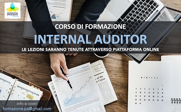 auditor internal.png