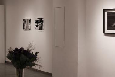 jinyong lian-galerie paris horizon-01.jpg
