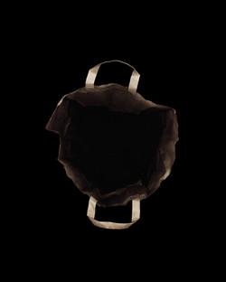 ZHAO,108X135CM,2012