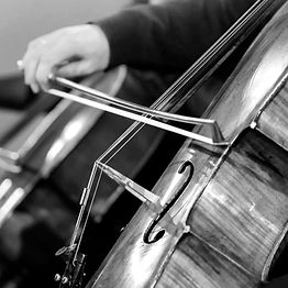 SMCL_Prof_Cello-generique