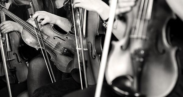 Colectif de la Cité : la musique et l'amitié qui rayonnent