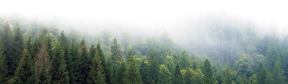 Martino Footwear : savourer la nature, une saison à la fois