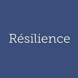 Résilience : faculté de retrouver sa forme initiale après avoir subi un choc.