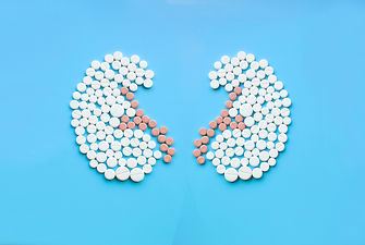 Kidneys made of pills on blue background