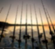 loreto fishing_MG_5882photomexico.jpg