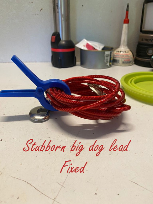 Dog lead photo - with text.jpg