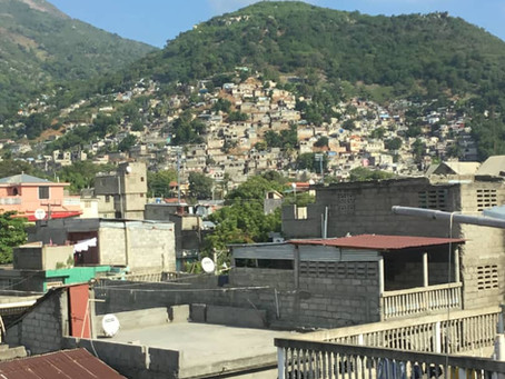 The Degradation of the Biodiversity of the City of Cap-Haitian