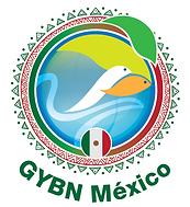 GYBN_Mexico_Ball_White-Border-Low.png