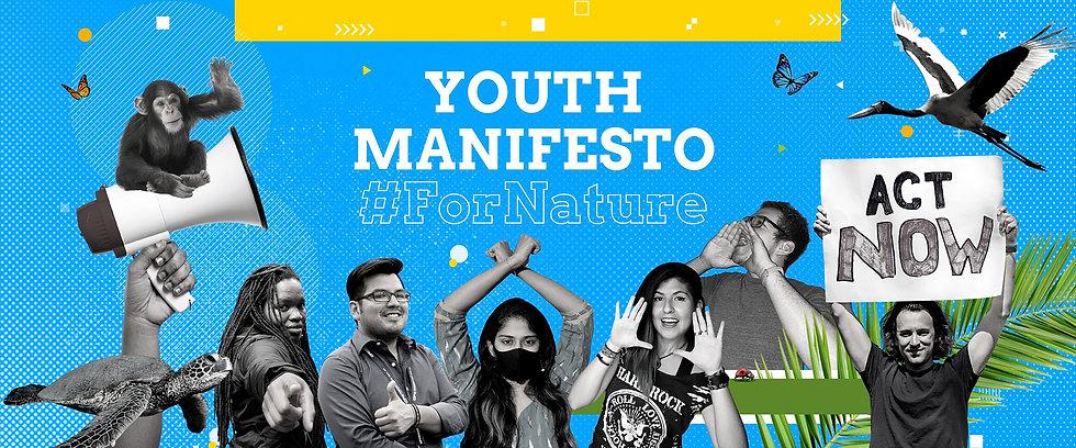 Youth Manifesto Elements Web 1.jpg