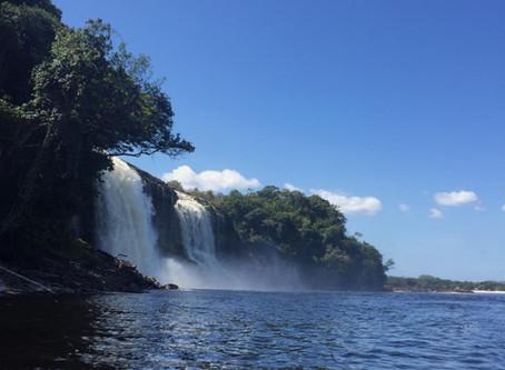 Canaima National Park: Ecocide, Malaria, and an Unpostponable Conversation