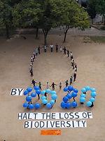 COP-10 image2.jpg