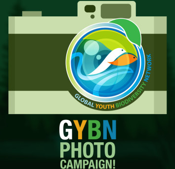 GYBN Photo Campaign