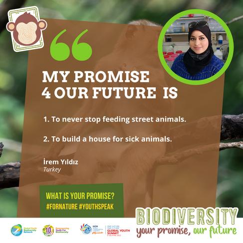 İrem Yıldız_Public_ Biodiversity_ Your P