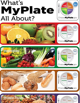 MyPlateInfographic.PNG