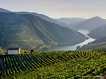 A beautiful scenic view of a chapel and vineyards in the Douro Valley, Portugal