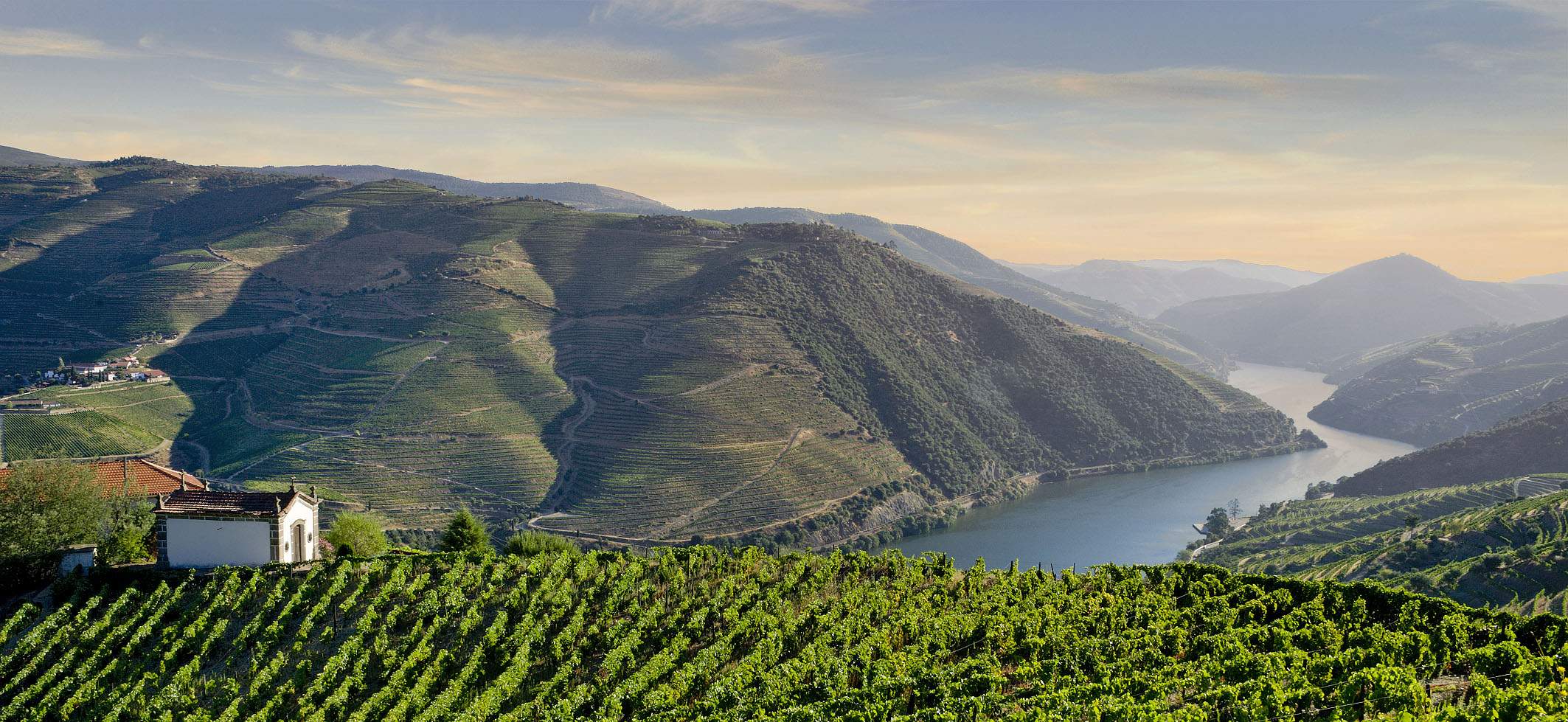 Vineyards on the Vale do Douro
