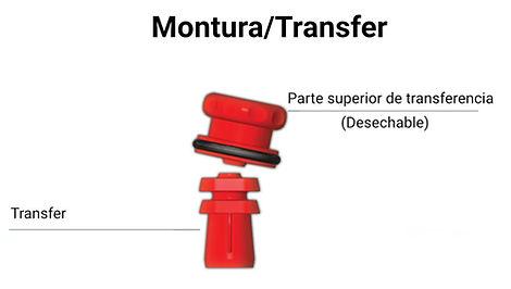 Transfer implantes Cortex