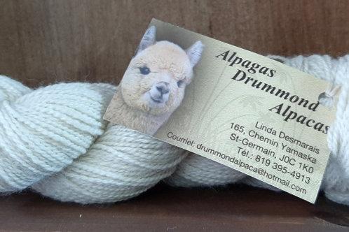 Alpaga Lace par Alpagas Drummond