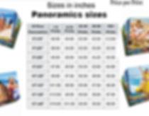Panoramic prices