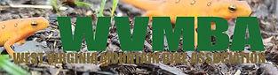 WVMBA- salamander.jpg