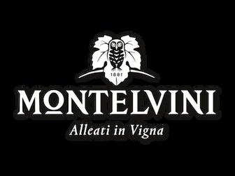 montelvini logo.png