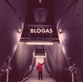 BLOGAS BB.jpg
