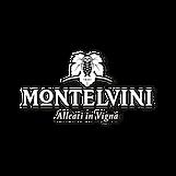 MONTELVINI2.png