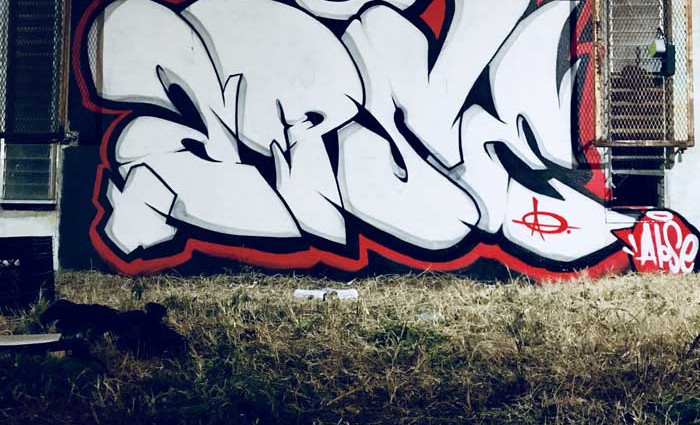 """Contrast """"APSE"""" tagging on a wall from our spray paint artist"""
