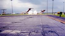FAA Airport Grants Available for Wildlife Hazard Mitigation