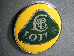 Lotus Repair Shop