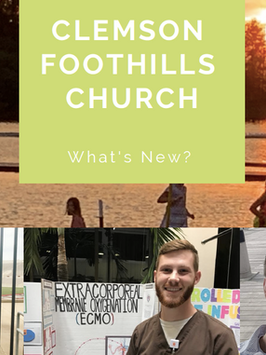 What's New at the CFC: June