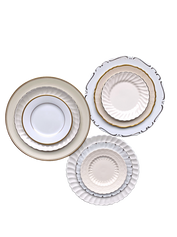 Neutral and Metallic Plate