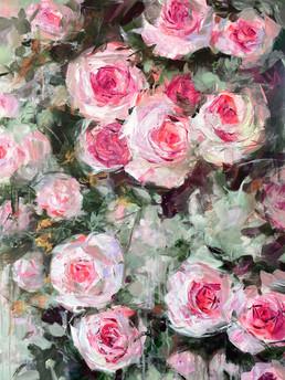 Sommer Rosen