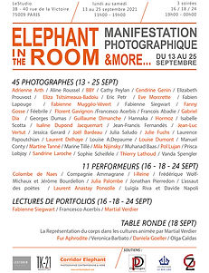 affiche-elephant in the room copie.jpg