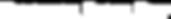 nanoshine_logo_white.png