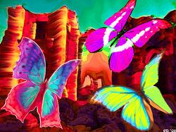 CastlesandButterfliescd copy