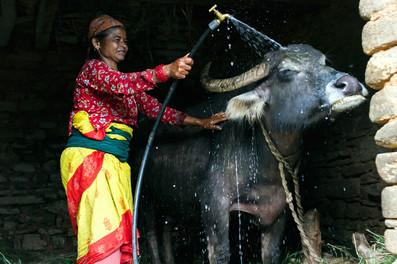 Tony-Prince-Travel-Nepal-15.jpg
