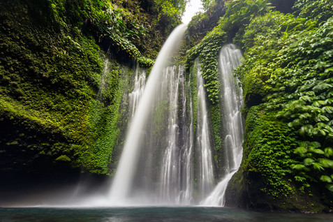 Tony-Prince-Nature-Indonesia-02.jpg