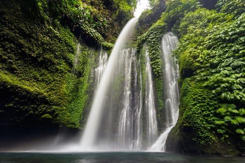 Tony-Prince-Nature-Indonesia-02.jpg