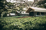 Ngorongoro Tortilis Outside.jpg