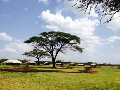 Mbugani Migration Camp Outside